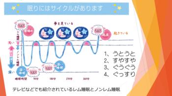 セイコーエプソンブログ睡眠のメカニズム.png