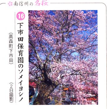 南桜下市田 1.jpg