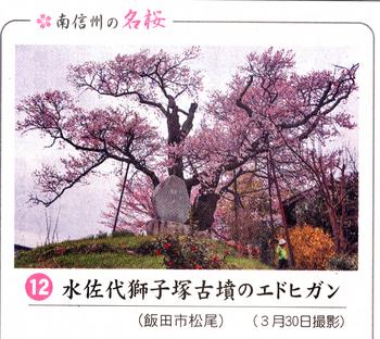 南桜獅子塚 5.jpg